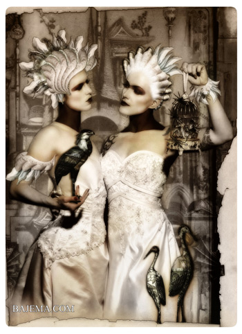 Bajema.com The Black Cat and Poisoned Tea Society Collection - The Birds of Paradise Brides