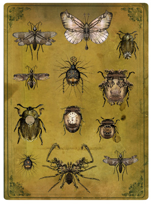Sepia Insects